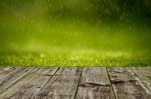 gromadzenie wody deszczowej
